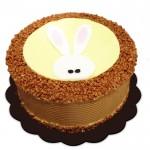 Easter Mocha Cake